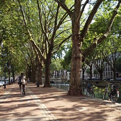 The beautiful tree-lined Kö.