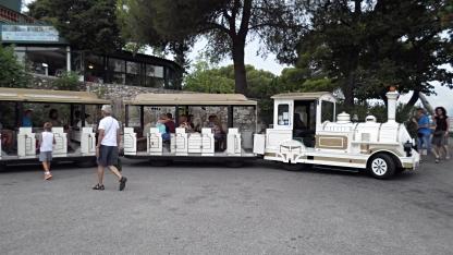 Our Petite Train