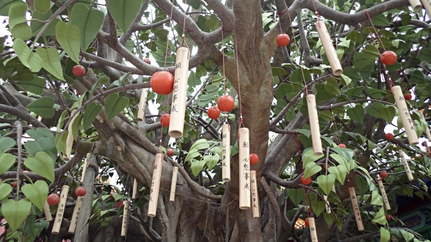 The Bodhi wishing tree