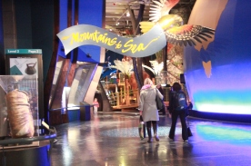 The entrance to the natural history part of Te Papa